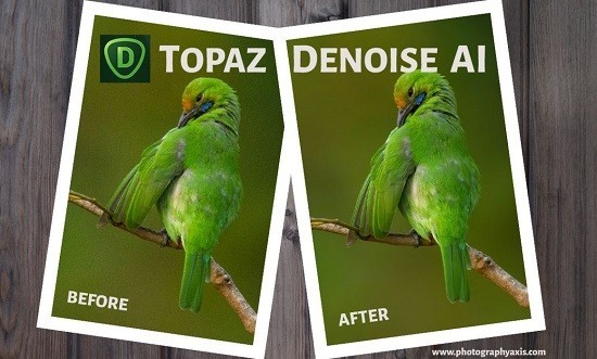 Topaz Denoise 6 0 2 fincarror topaz-denoise-ai-portable
